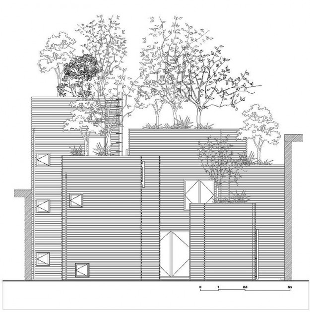 House for trees 14