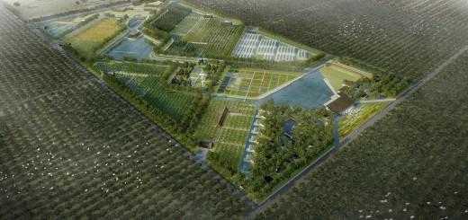 Organic_Farm_in_Cuchi-01