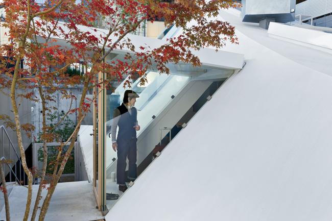 HouseK_Fujimoto13.jpg