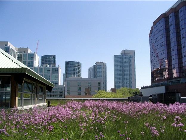 7 xu hướng thiết kế kiến trúc bền vững năm 2014