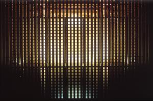 TadaoAndo2.jpg