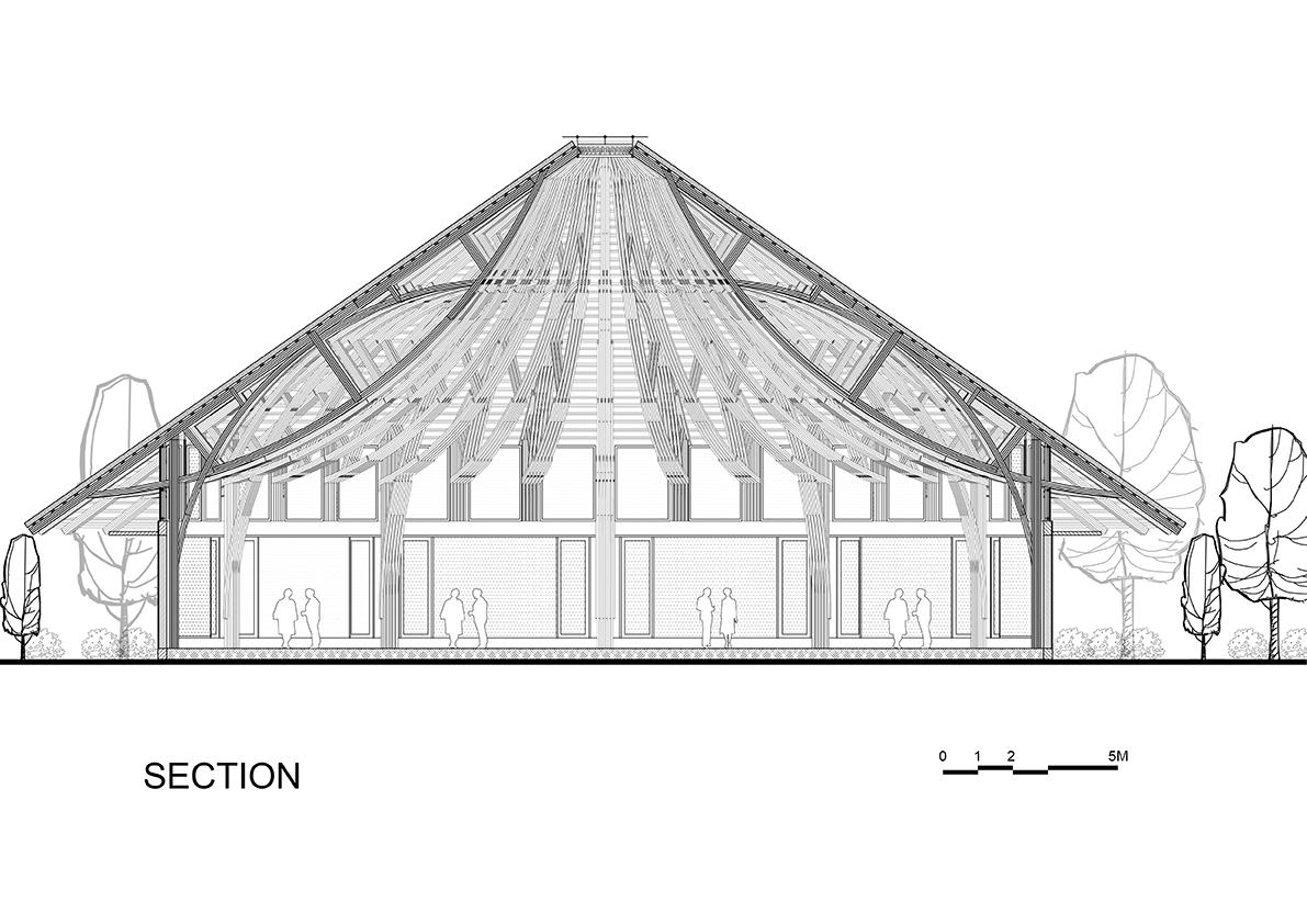 bambubuildserena16.jpg