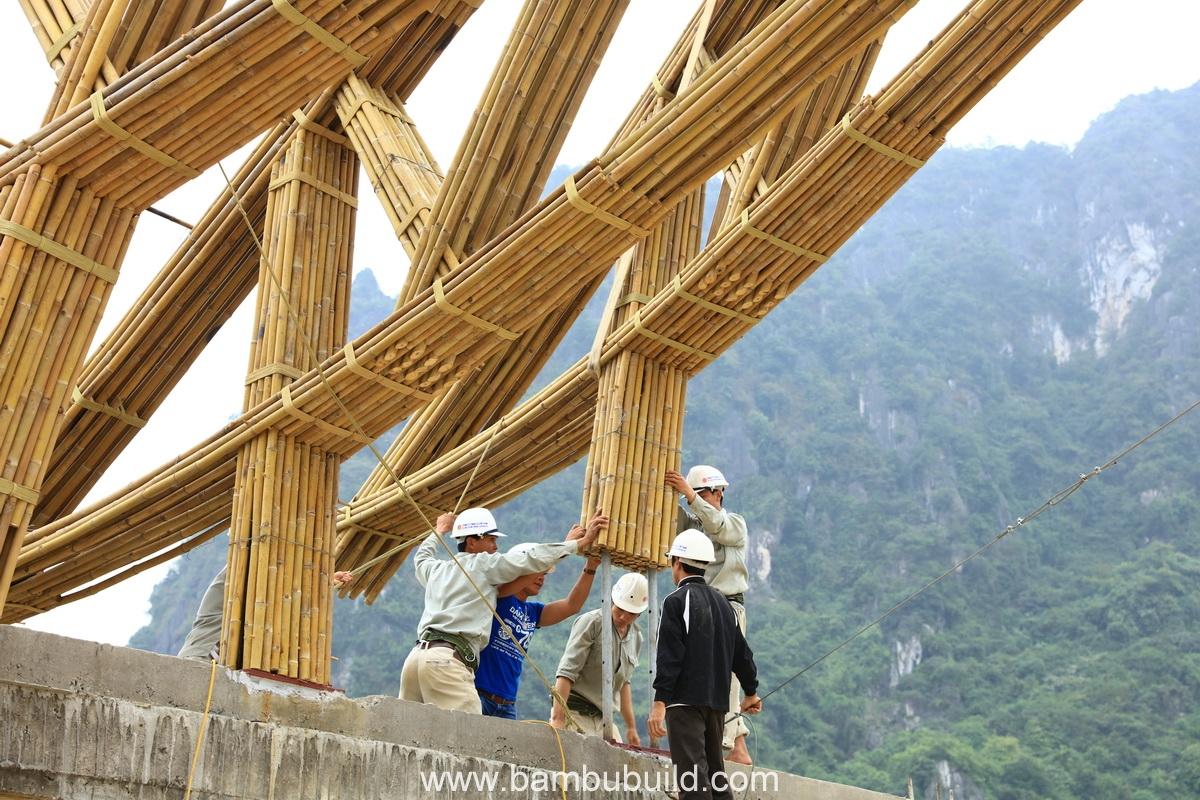 bambubuildserena21.JPG