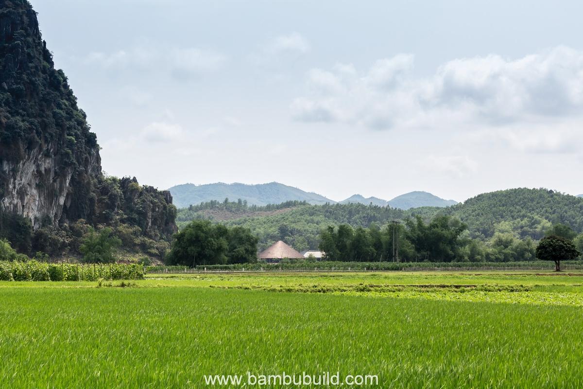 bambubuildserena22.jpg